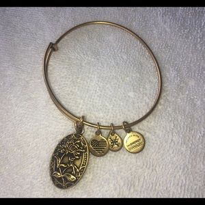 Alex and Ani Gold
